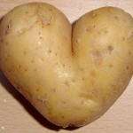 potato.heart_.WIKI_-150x150