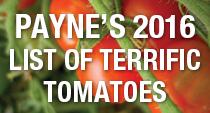 PAYNES_terrifictomatoes