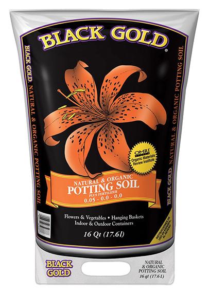blackgoldpotting