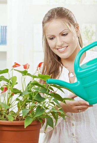 wateringgirl2