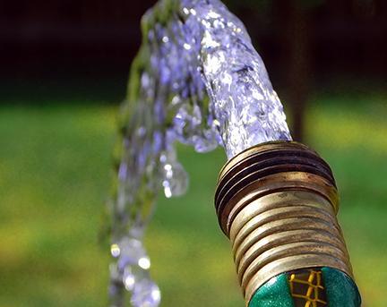 watering4