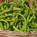 beans-3702999_960_720